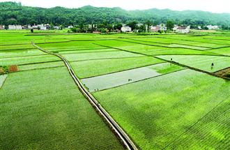 农田灌溉用水消毒